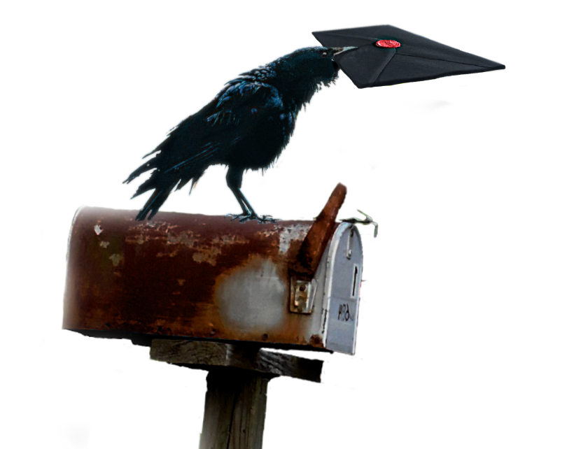 A black raven standing on a letterbox delivering a mysterious mail in a black envelope with a red wax seal